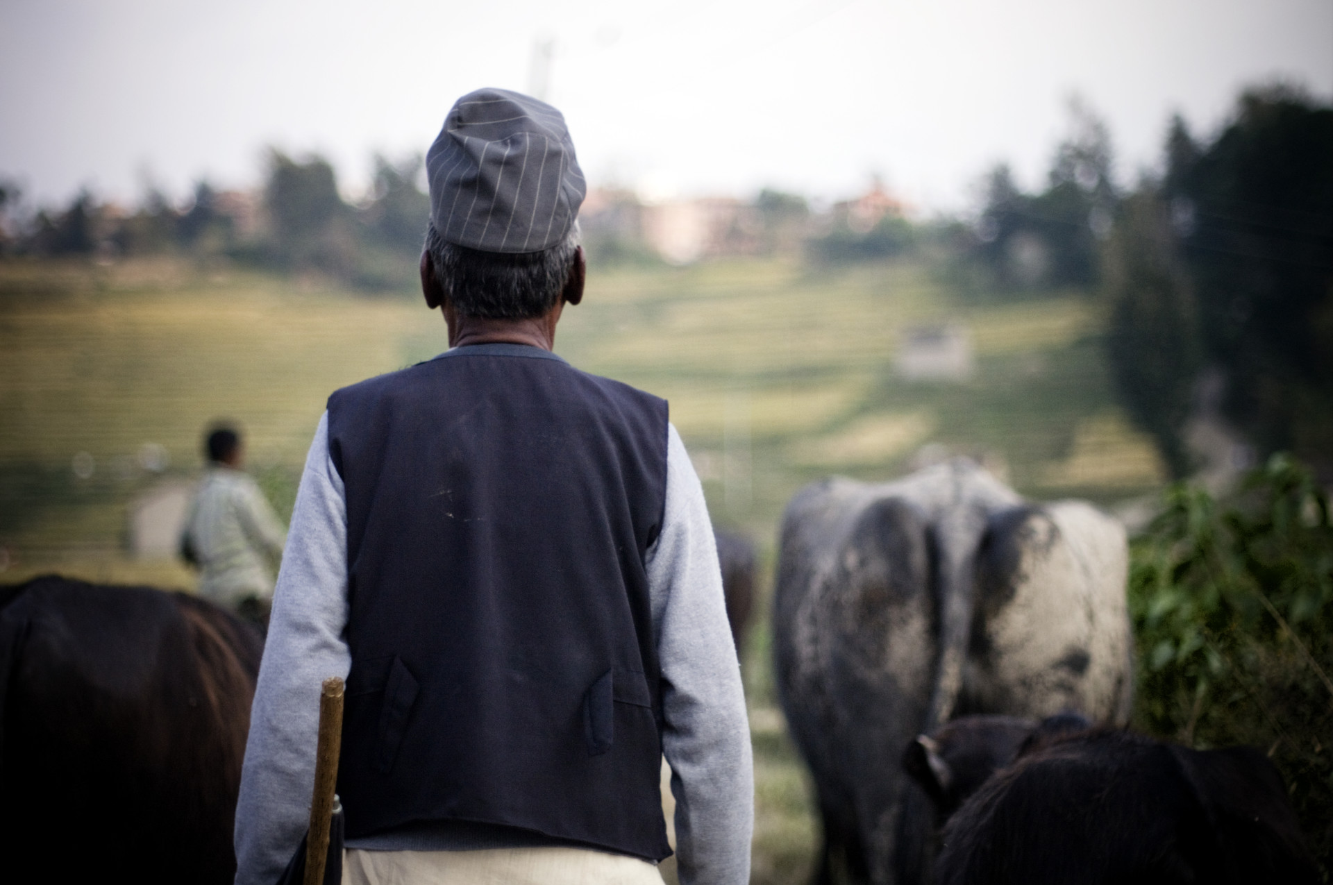 Farmer near Kathmandu (Nepal)