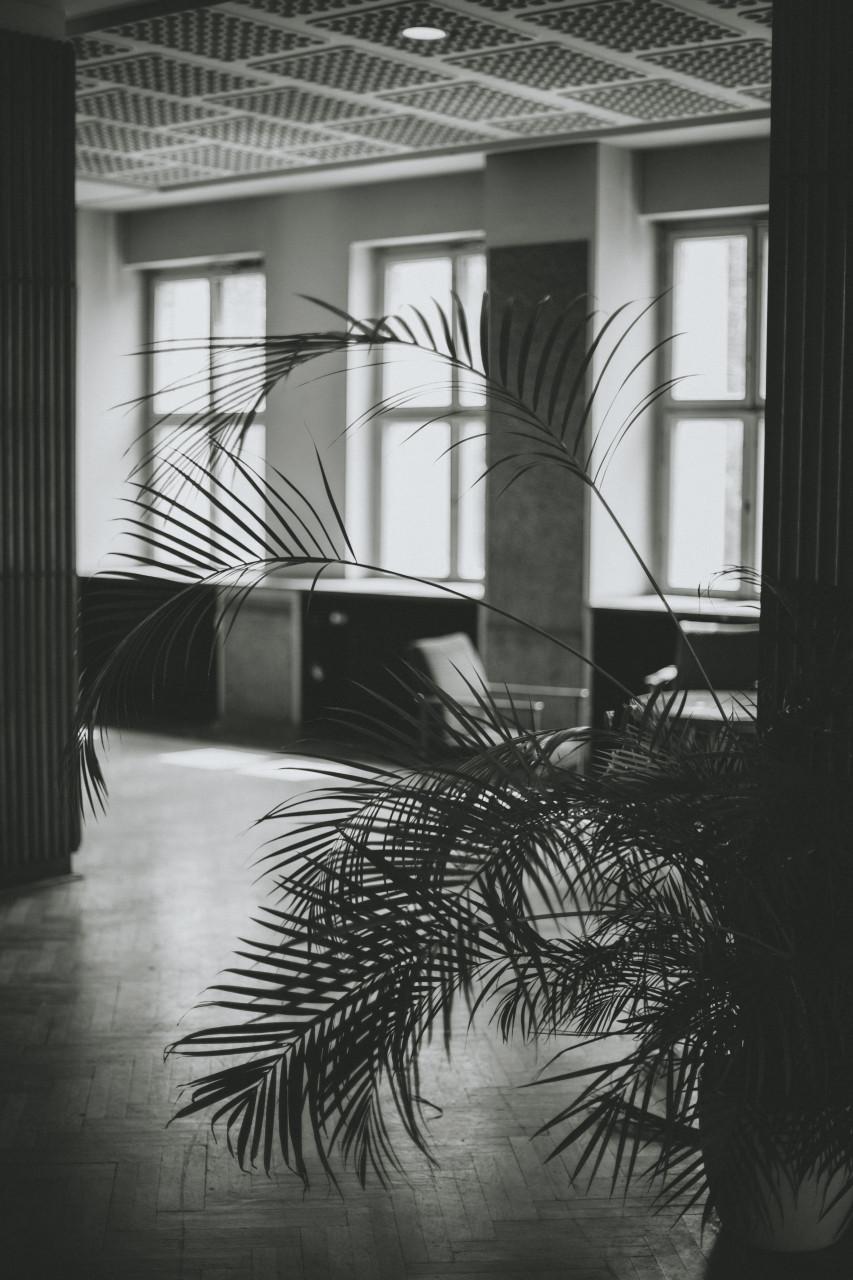 Fotografin-Berlin_Carolin-Weinkopf_Interior_IMG_1274