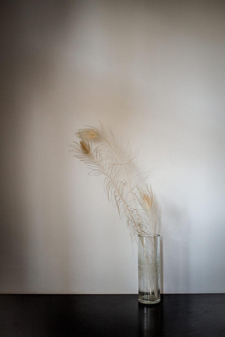 Interior_Feather_081704_Carolin-Weinkopf