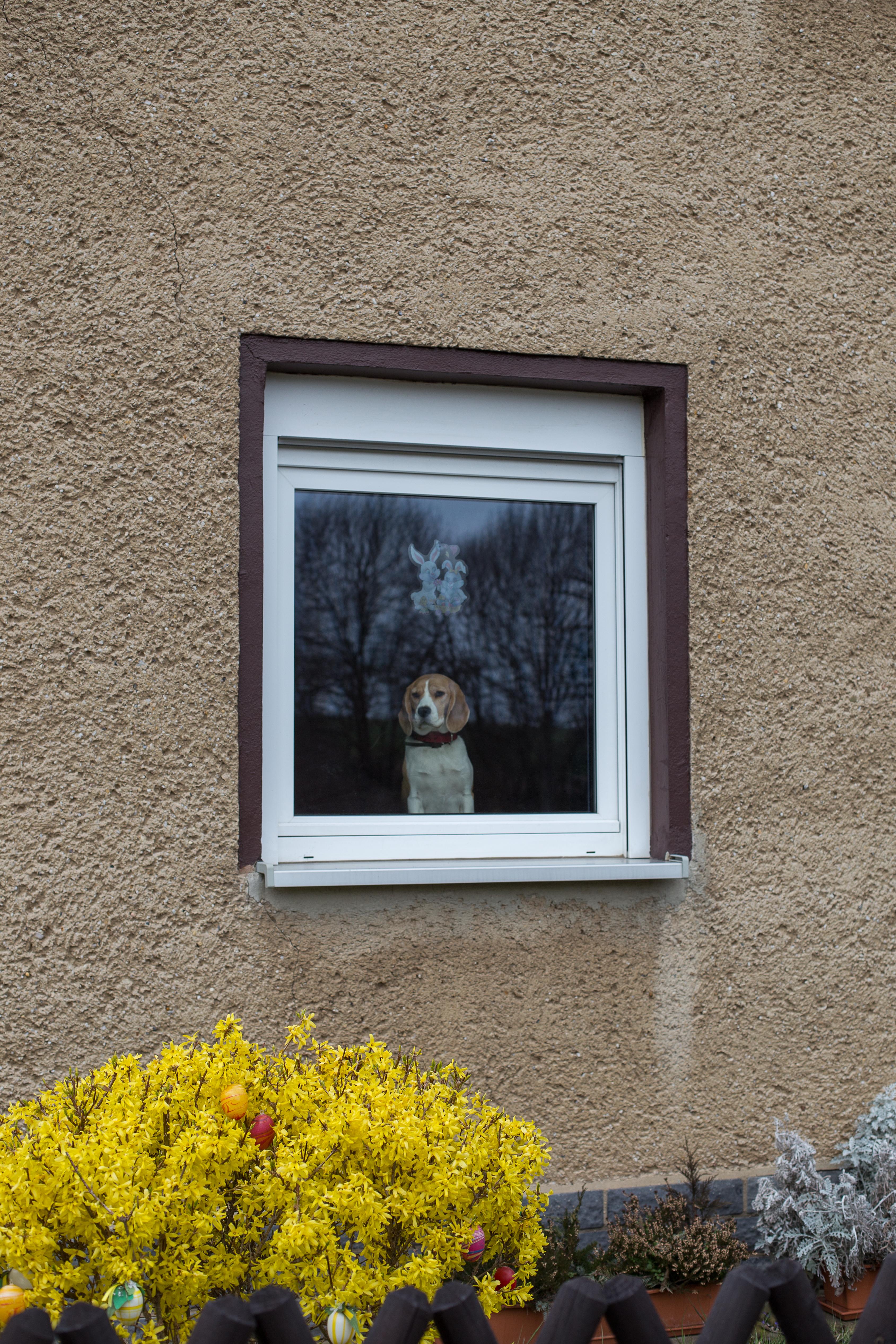 Tröglitz_Politiken_IMG_7628_Carolin-Weinkopf