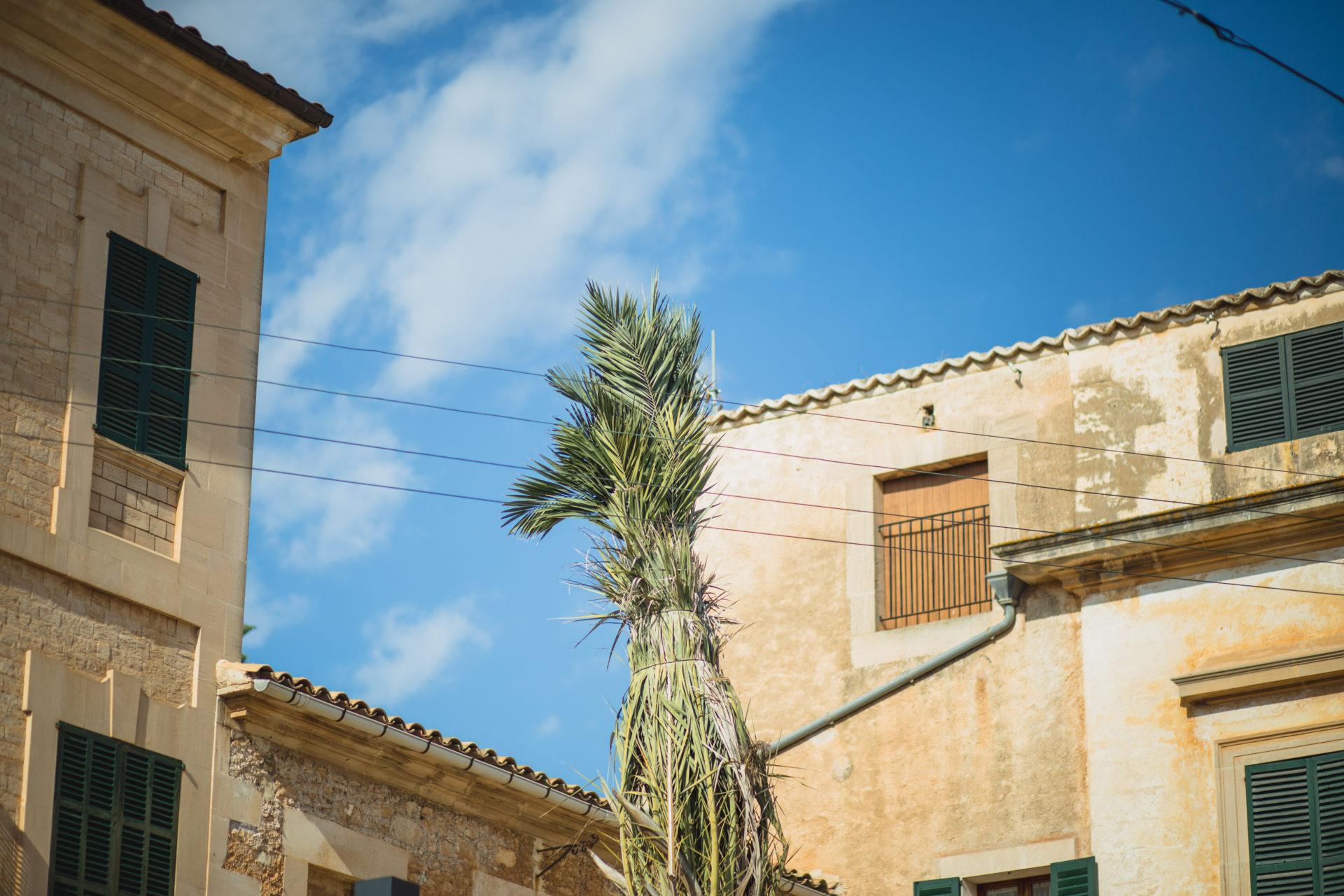 Mallorca_IMG_3434_Carolin-Weinkopf