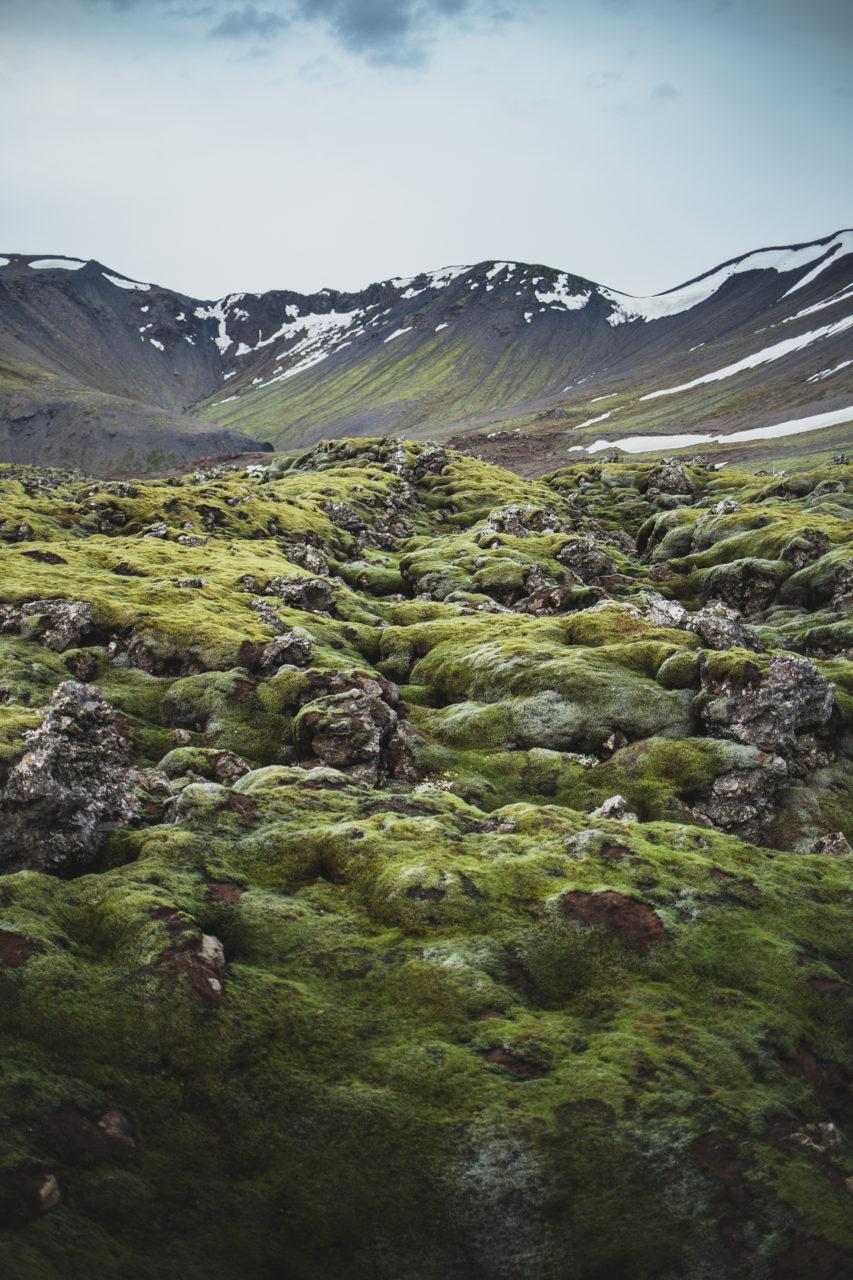 Iceland_Island_0008_Carolin-Weinkopf