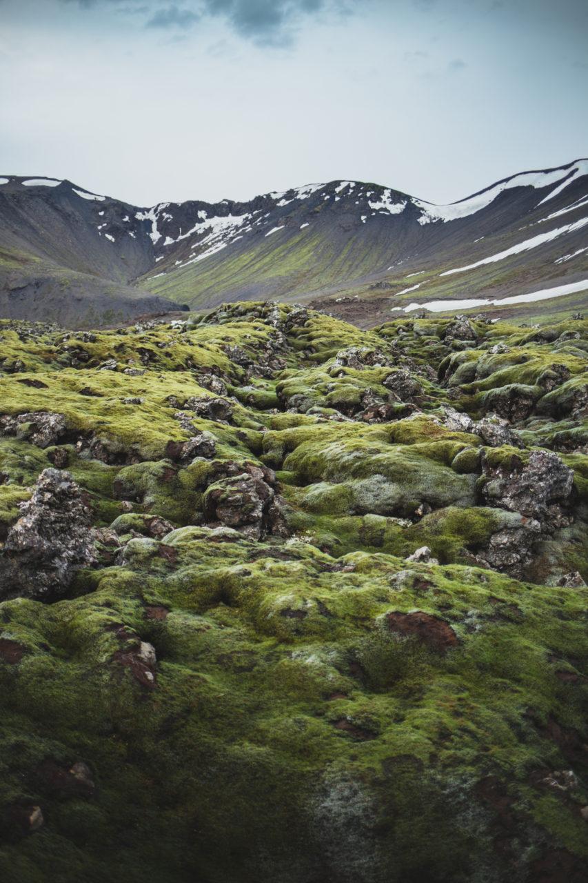 Iceland_Island_IMG_0522_Carolin-Weinkopf