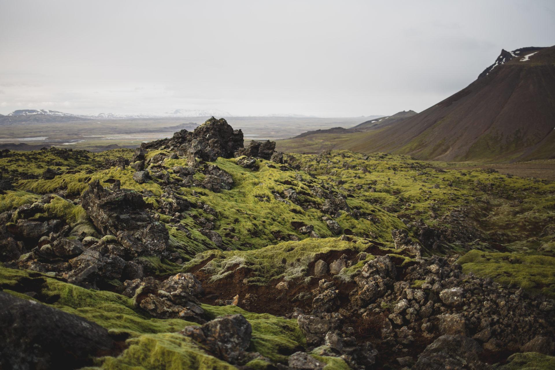 Island_Iceland_IMG_0045_Carolin-Weinkopf
