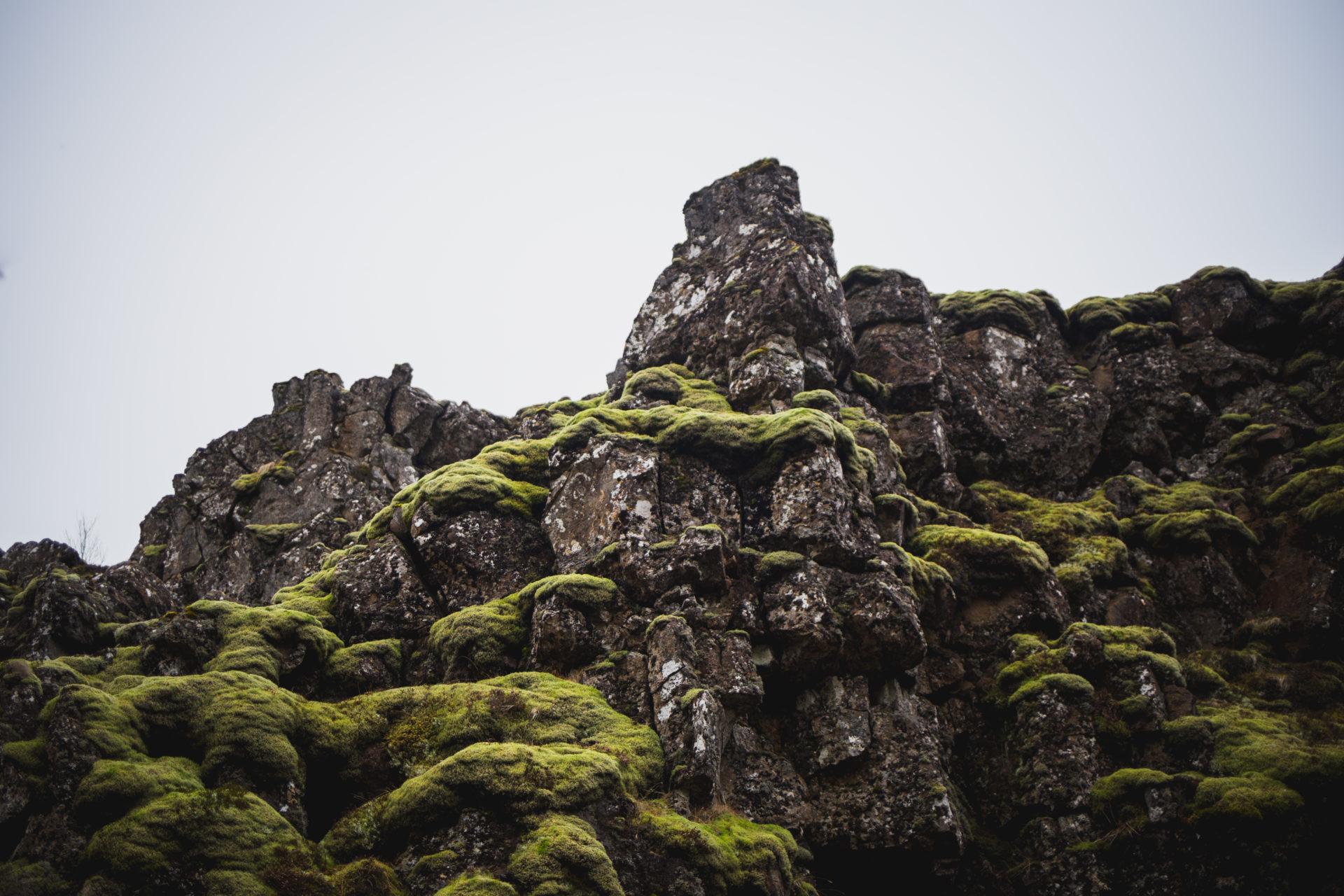 Island_Iceland_IMG_0188_Carolin-Weinkopf-2