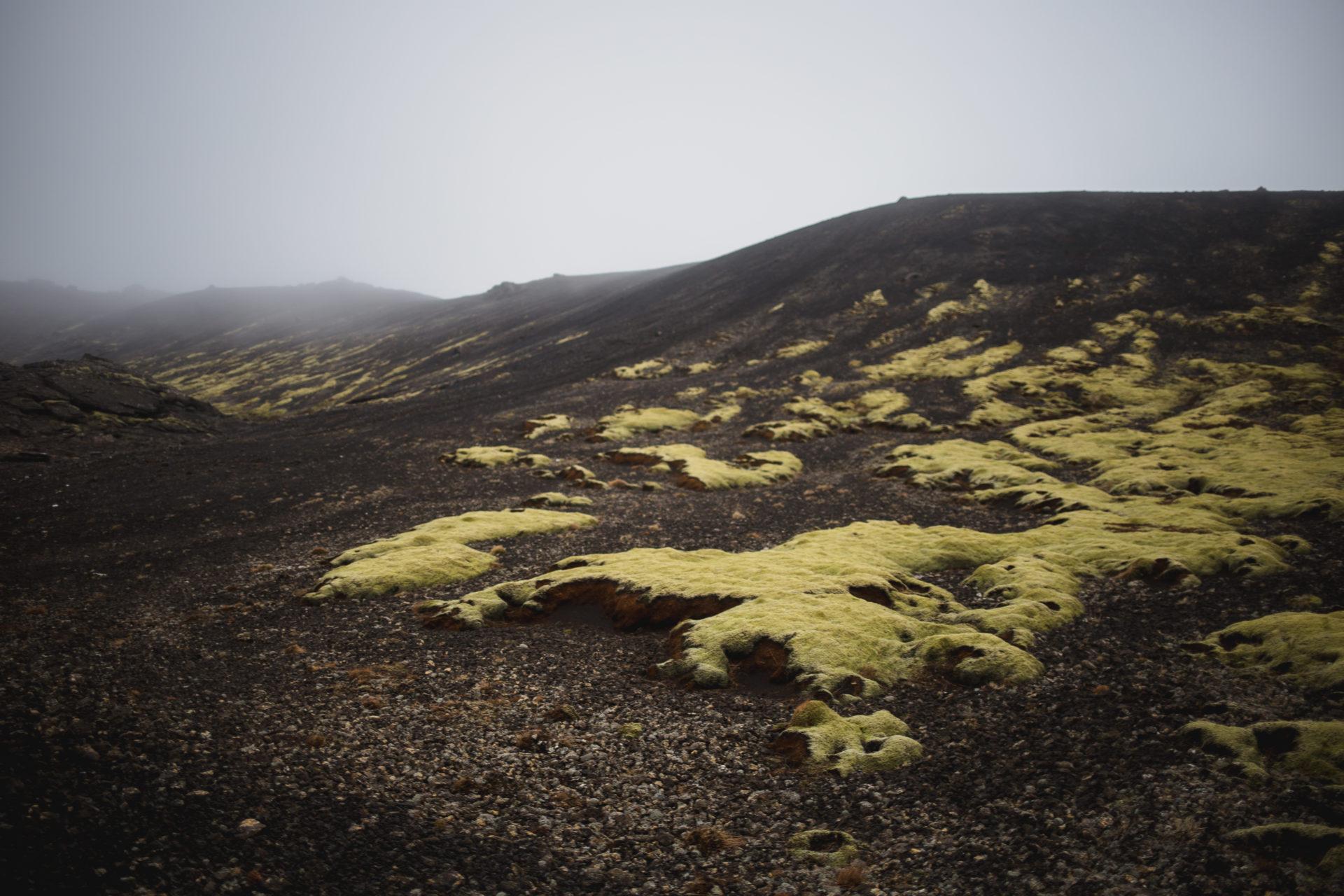 Island_Iceland_IMG_1492_Carolin-Weinkopf