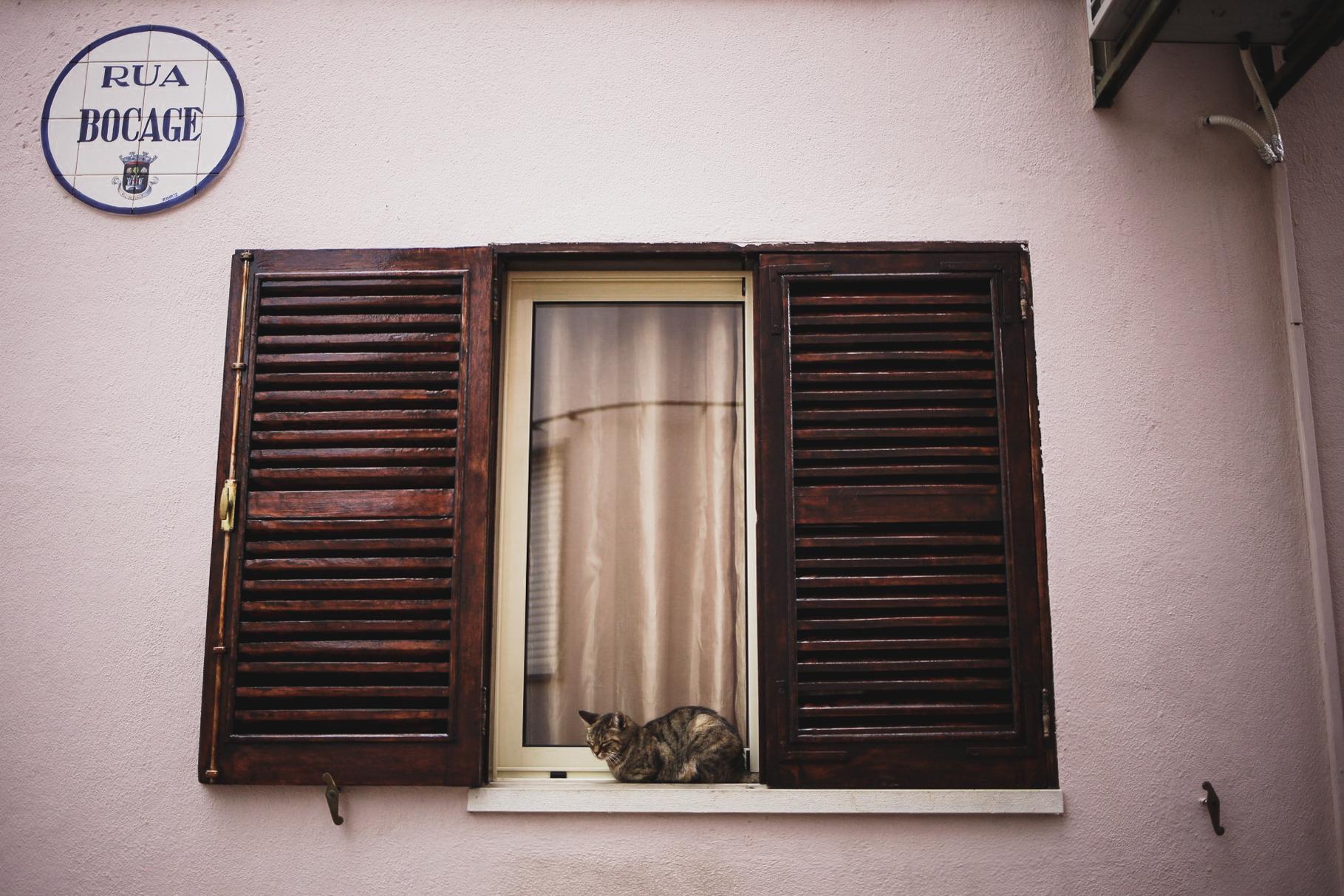 Portugal_IMG_7235_Carolin-Weinkopf