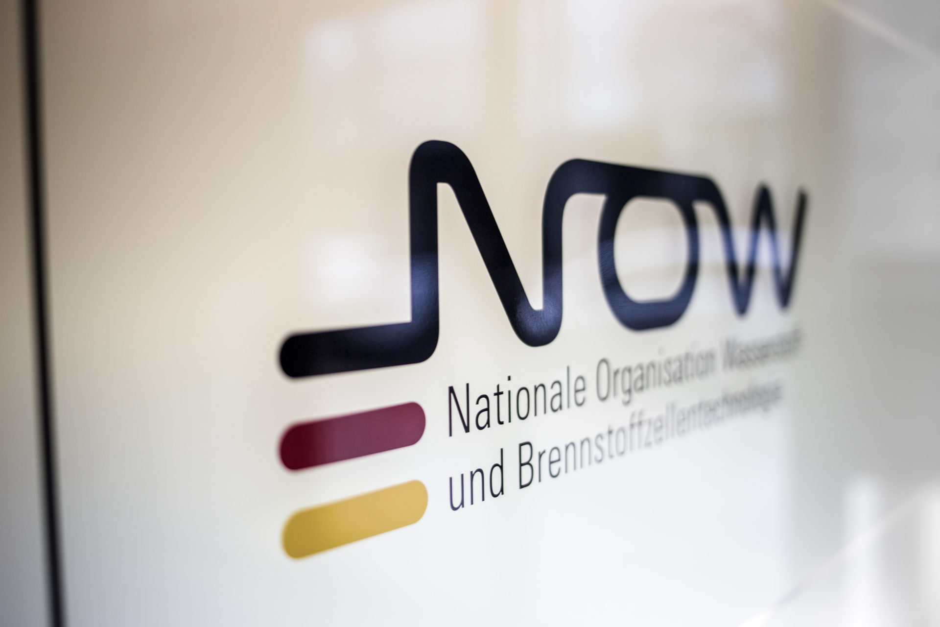 NOW-GmbH_IMG_1377_Carolin-Weinkopf